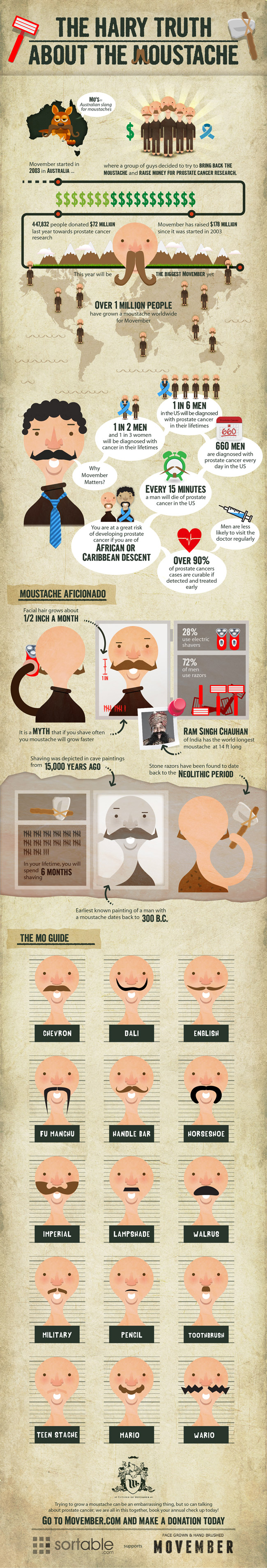 The Hairy Truth About Moustache, Movember Infographic