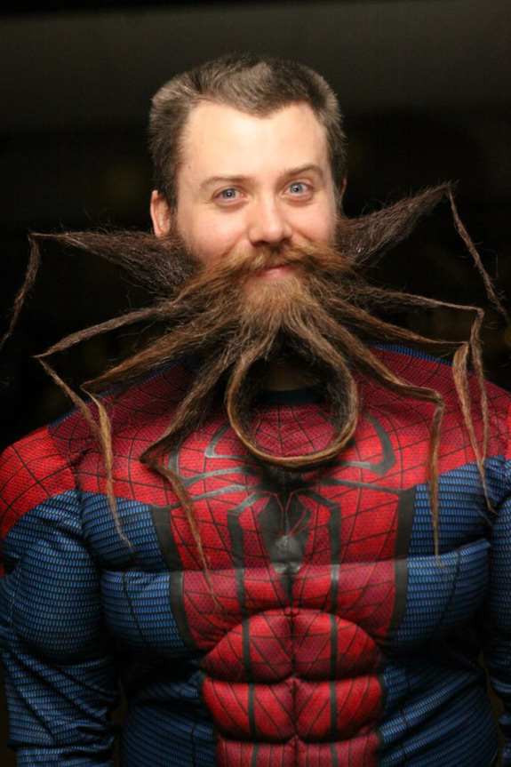 Funny Photos Spiderman Beard