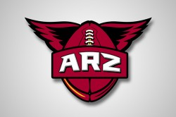 Arizona Cardinals Phoenix Suns