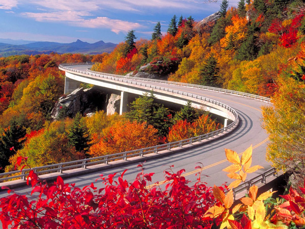 Fall Travel Essentials
