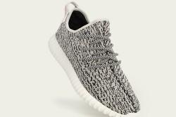 Adidas Yeezy Boost Sneaker Shoe