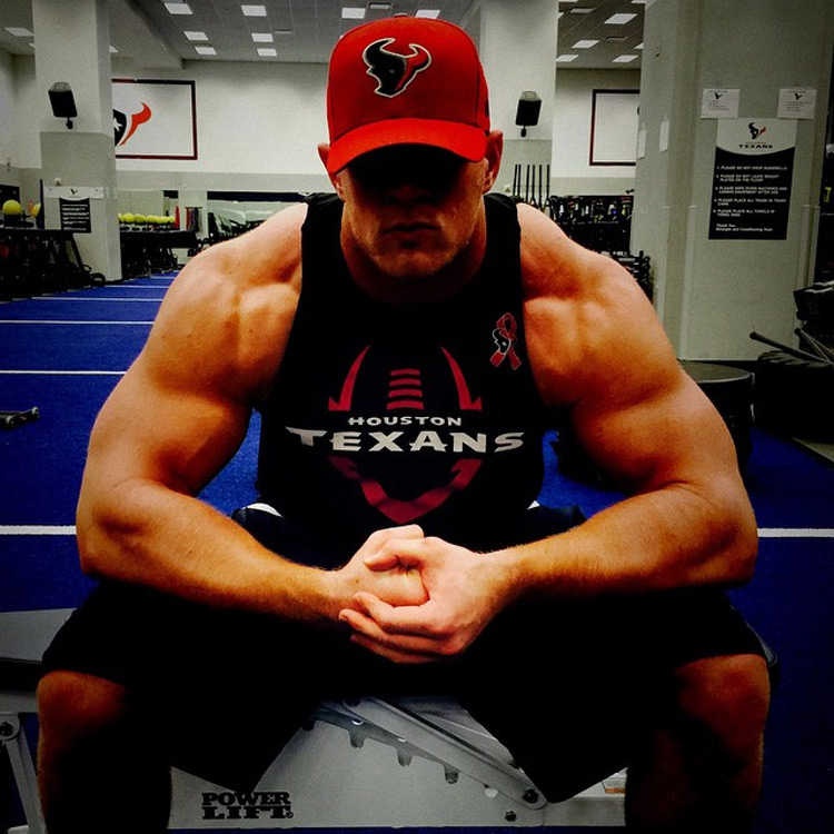 Jj Watt Houston Texas Nfl Football