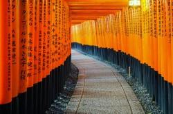 Kyoto Japan Torii Gates