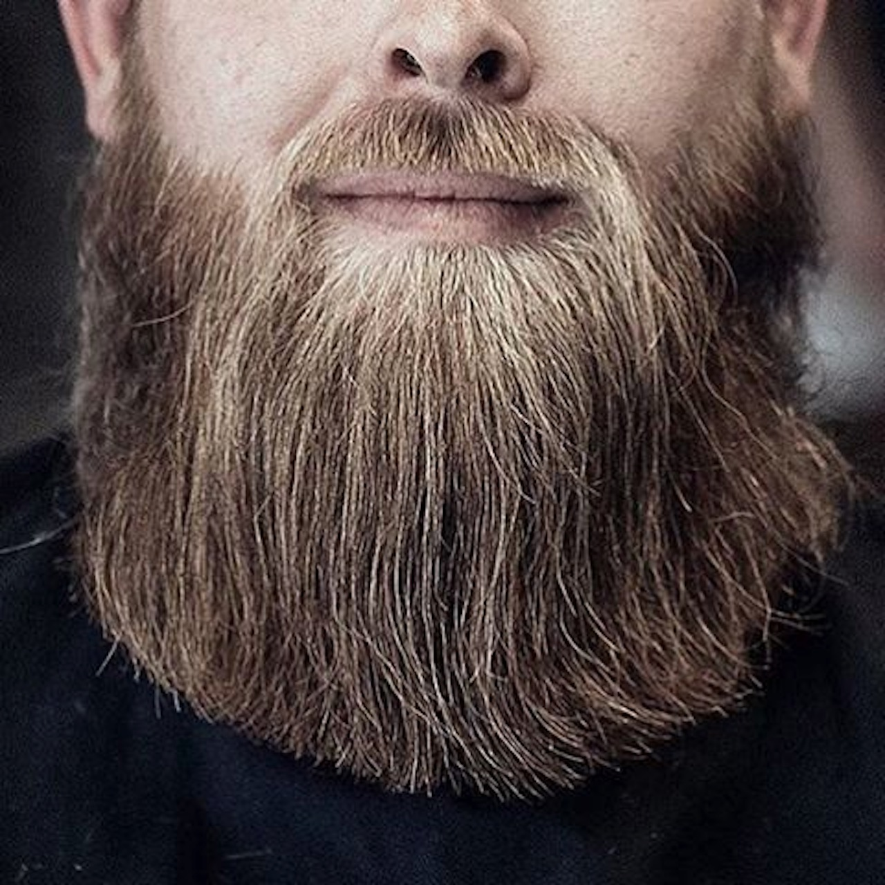 Movember Beard Gang 2