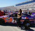 Nascar Las Vegas Race Monster Energy Girl