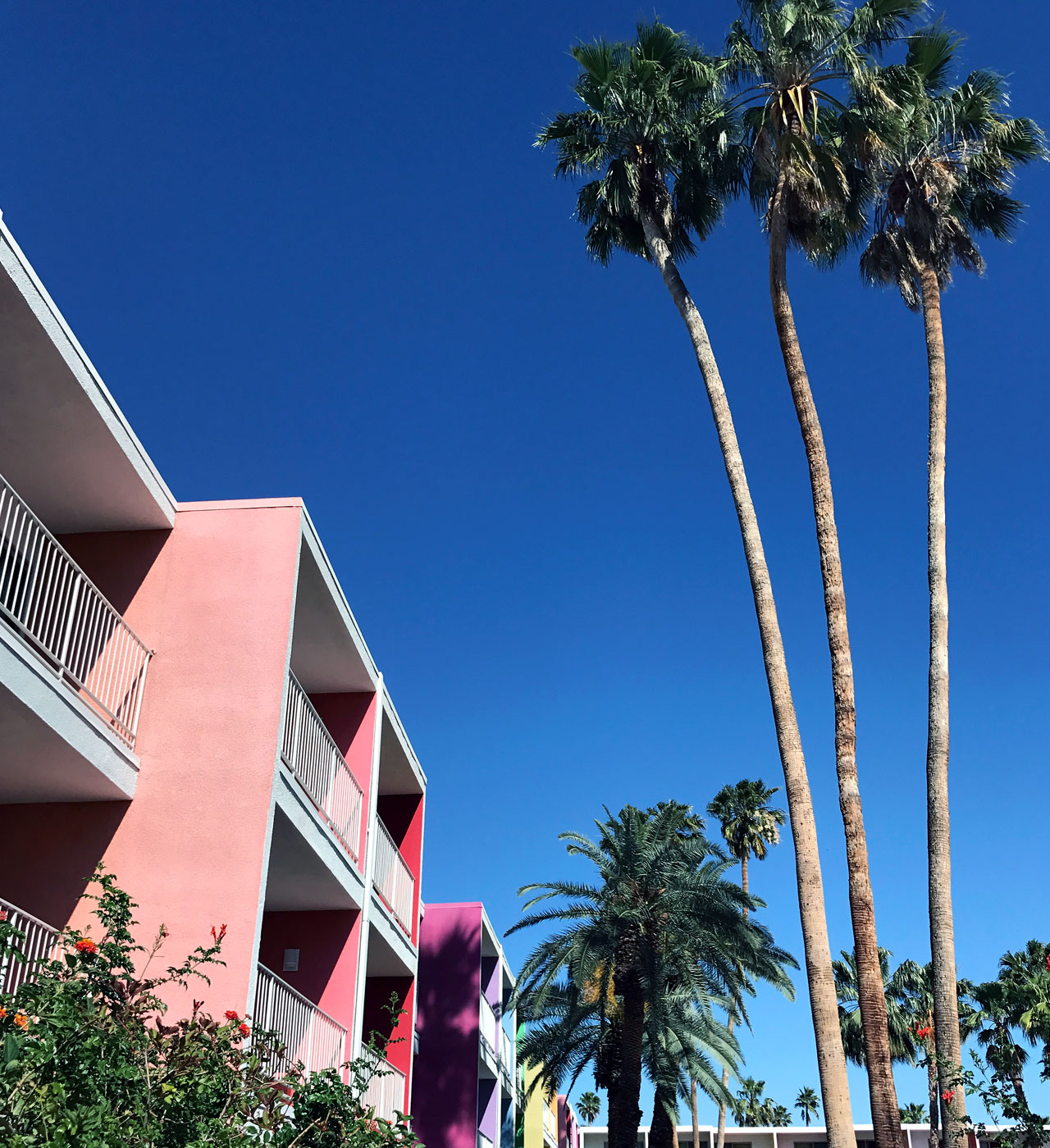 The Saguaro Palm Springs 7