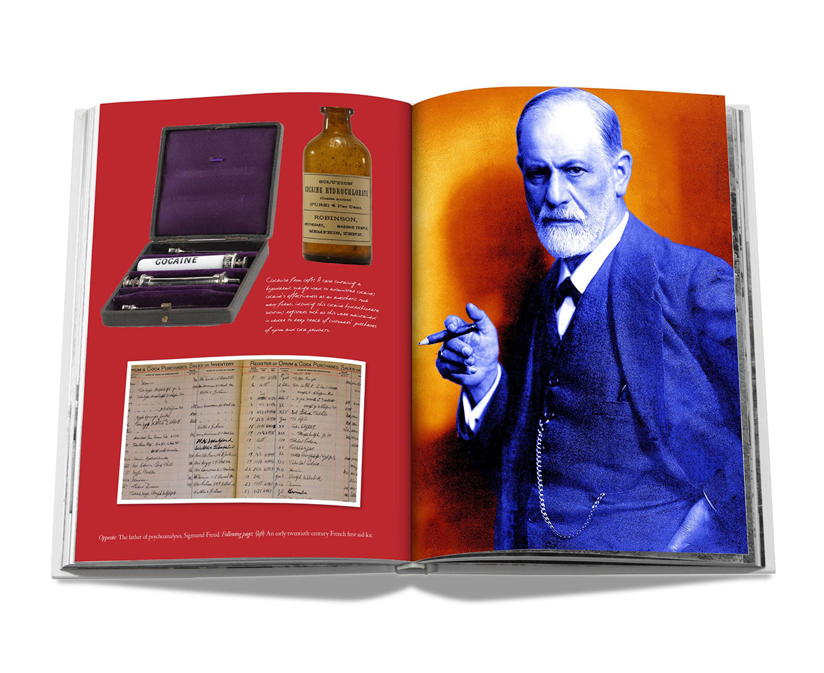 Cocaine History Culture Book