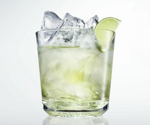 Absolute Gimlet